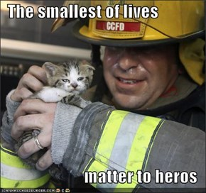 The smallest of lives   matter to heros