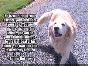 He is your friend, your partner, your  defender, your dog.  You are  