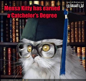 Mensa Kitty has earned