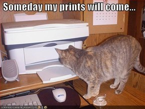 Someday my prints will come...