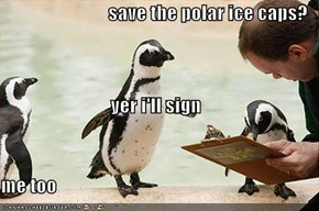save the polar ice caps? yer i'll sign me too