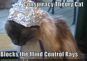 Conspiracy Theory Cat  Blocks the Mind Control Rays