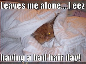 Leaves me alone....I eez  having a bad hair day!