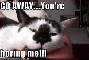 GO AWAY....You're  boring me!!!