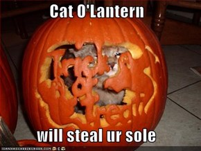Cat O'Lantern  will steal ur sole