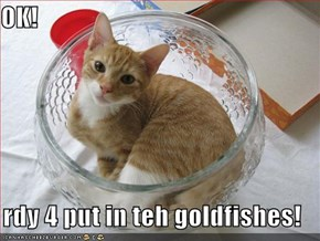 OK!  rdy 4 put in teh goldfishes!