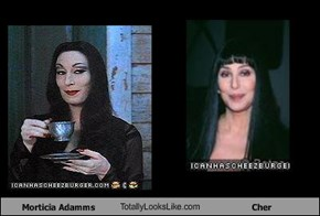 Morticia Adamms TotallyLooksLike.com Cher