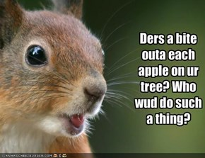 Ders a bite outa each apple on ur tree? Who wud do such a thing?