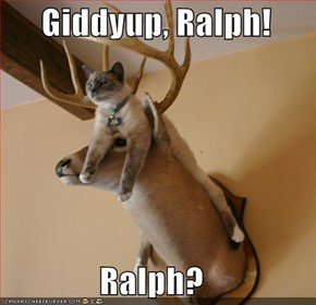 Giddyup, Ralph!  Ralph?