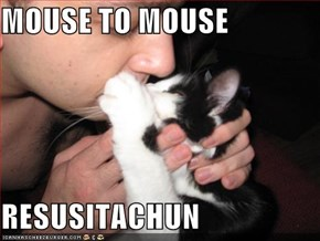 MOUSE TO MOUSE  RESUSITACHUN