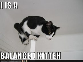 I IS A  BALANCED KITTEH