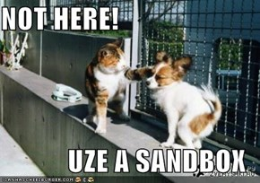 NOT HERE!  UZE A SANDBOX