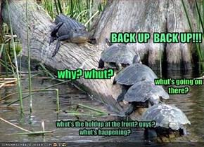 BACK UP  BACK UP!!!