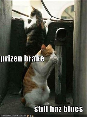 prizen brake still haz blues