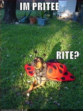 IM PRITEE RITE?
