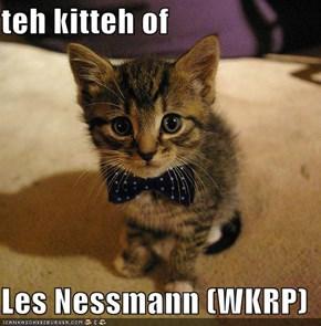 teh kitteh of  Les Nessmann (WKRP)