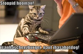 Stoopid hooman!  icanhascheezburger, naut ihasahotdog!