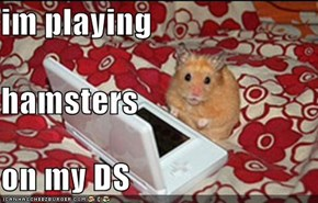 im playing hamsters on my DS