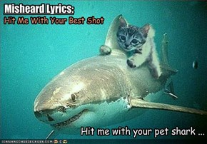 Misheard Lyrics: Pat Benatar - Hit Me With Your Best Shot