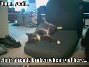 Umm.. yeah...  chair already broken when i got here...