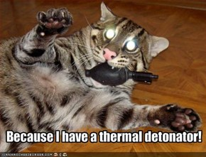 Because I have a thermal detonator!