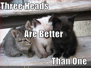 Three Heads Are Better Than One