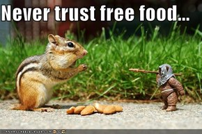Never trust free food...