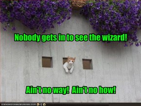 Nobody gets in to see the wizard!
