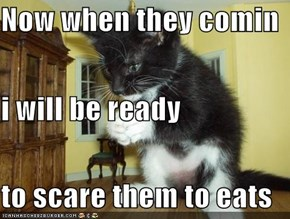 Now when they comin i will be ready to scare them to eats