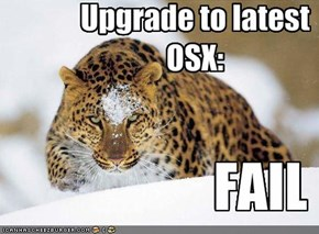 Upgrade to latest OSX: