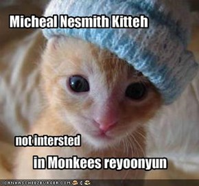 Micheal Nesmith Kitteh