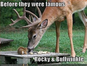 Before they were famous  Rocky & Bullwinkle