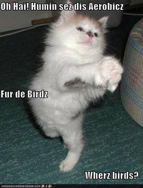 Oh Hai! Humin sez dis Aerobicz Fur de Birdz Wherz birds?
