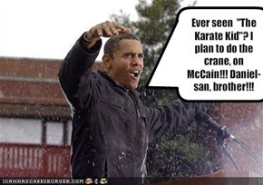 "Ever seen  ""The Karate Kid""? I plan to do the crane, on McCain!!! Daniel-san, brother!!!"