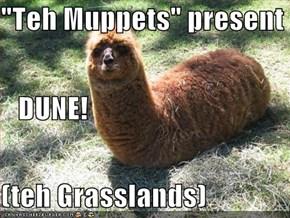 """""""Teh Muppets"""" present    DUNE! (teh Grasslands)"""