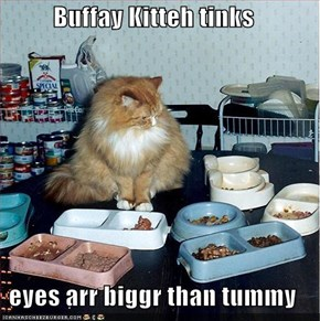 Buffay Kitteh tinks  eyes arr biggr than tummy