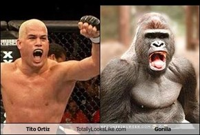 Tito Ortiz Totally Looks Like Gorilla