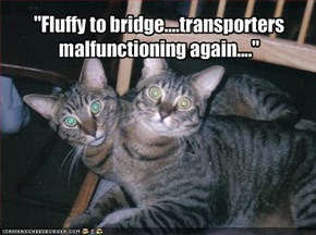 """Fluffy to bridge....transporters malfunctioning again...."""
