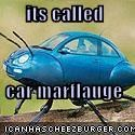 its called  car marflauge