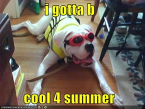 i gotta b  cool 4 summer