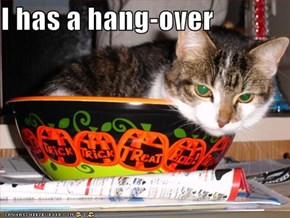 I has a hang-over