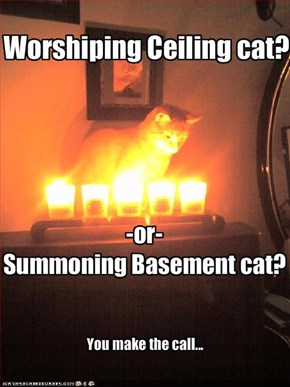 Worshiping Ceiling cat?