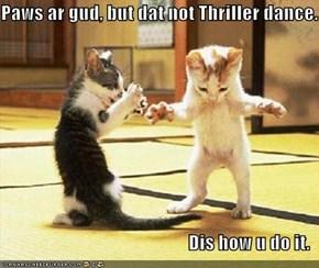 Paws ar gud, but dat not Thriller dance.  Dis how u do it.