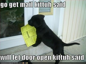 go get mail kittuh said  will let door open kittuh said
