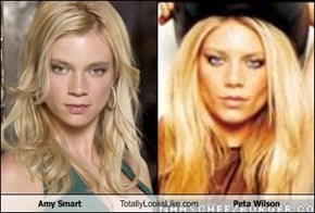 Amy Smart Totally Looks Like Peta Wilson