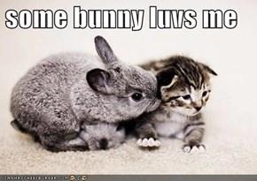 some bunny luvs me