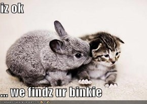 iz ok  ... we findz ur binkie