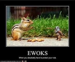 EWOKS