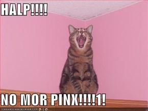 HALP!!!!  NO MOR PINX!!!!1!