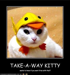 TAKE-A-WAY KITTY